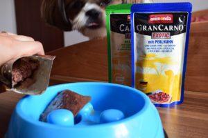 psia karma z dobrym składem