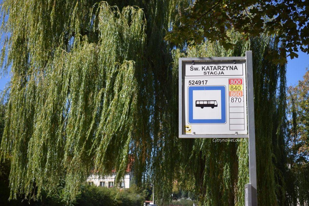 swieta-katarzyna-autobusy