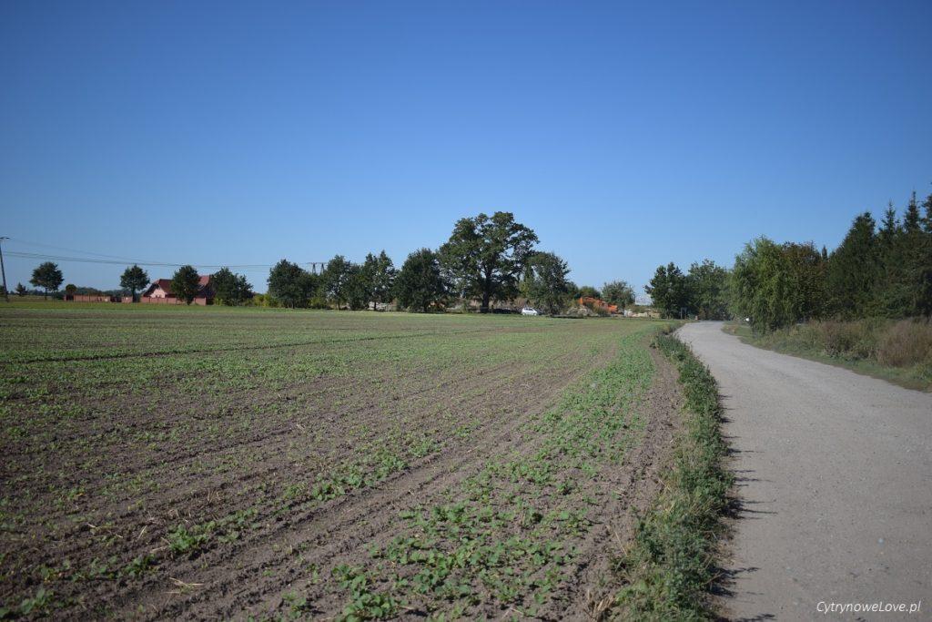 swieta-katarzyna-trasy-rowerowe