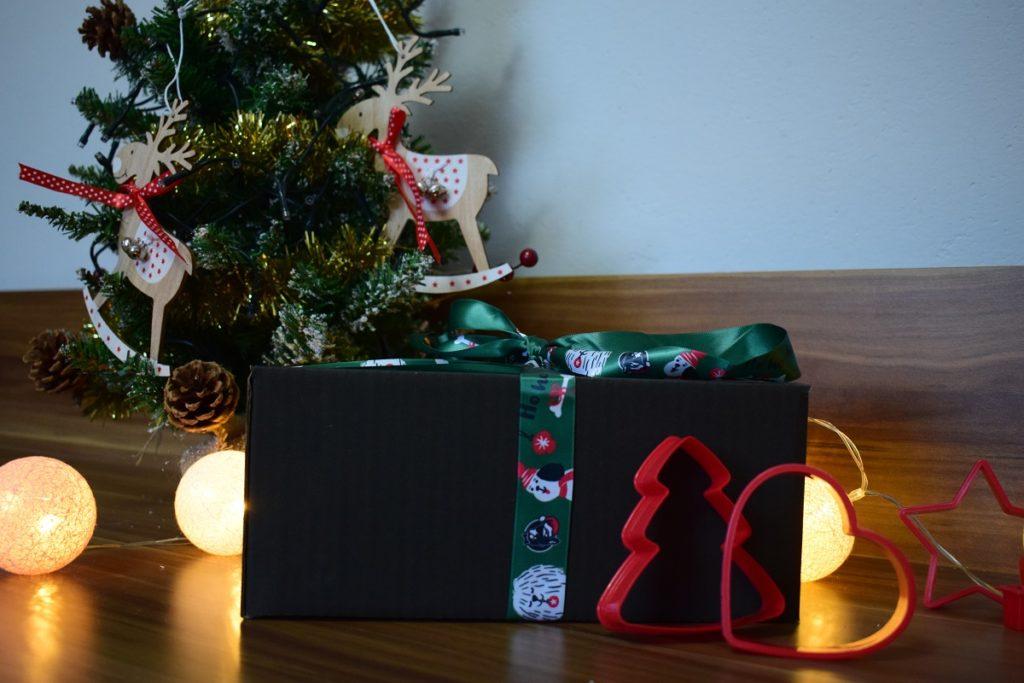 zestaw świąteczny dla psa
